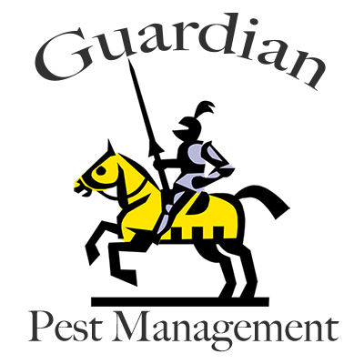 Guardian Pest Management | Pest Control