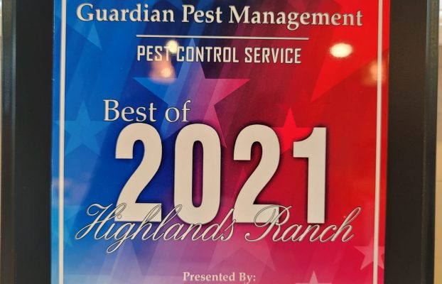 Best Pest Control Company 2021 | Highlands Ranch