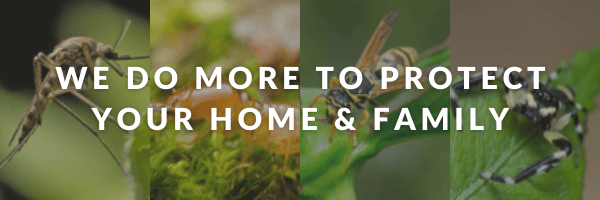 We do more to protect your home and family