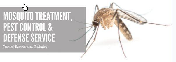 Mosquitoes: Get Rid of Buzzing Pests